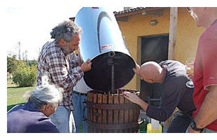any more in that barrel of grapes? winemaking in tuscany, italy